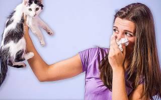 Насечки на аллергию