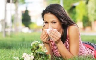 Причины возникновения аллергического ринита