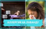 Аллергия на лаванду