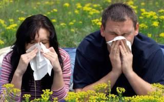 Передается ли аллергия
