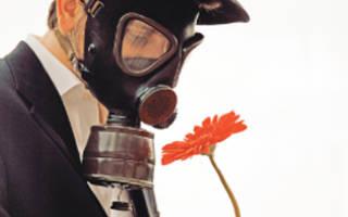 Аллергия на растения лечение