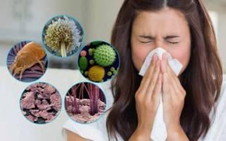 Хронический аллергический ринит