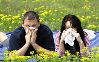 Народные средства от аллергии на цветение