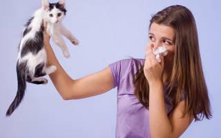 Ароматерапия при аллергии