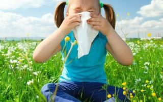 Аллергия у детей на пыльцу