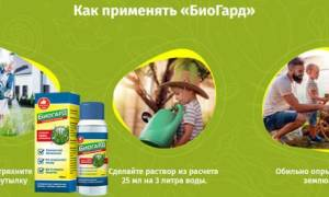 Биогард препарат от сорняков: описание, инструкция