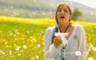 Симптомы аллергии на цветение: лечение и профилактика